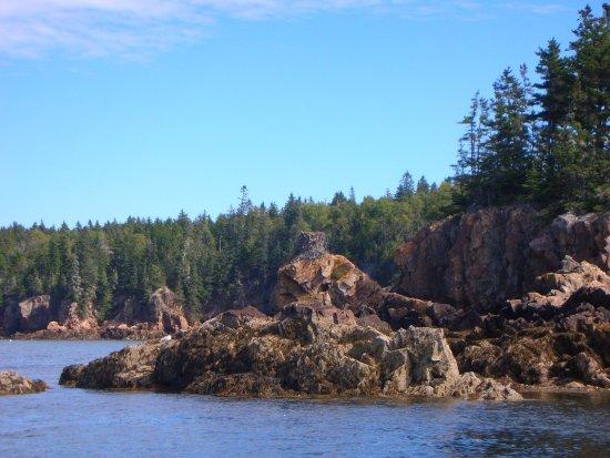 Sail Acadia: photo0.jpg