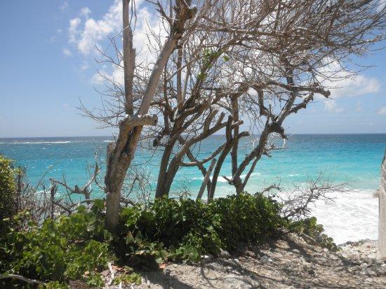 Union Hall, Barbados: a destra Crane beach - a sinistra Ginger beach