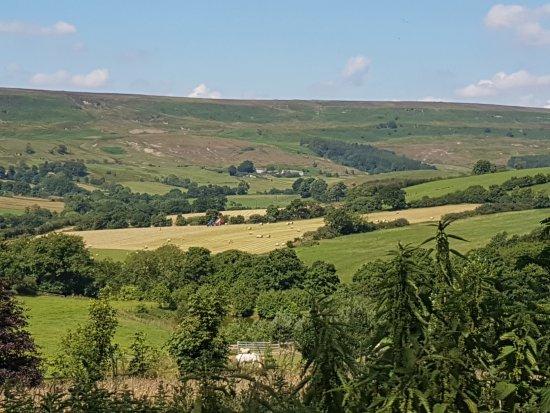 Rosedale East, North York Moors National Park.
