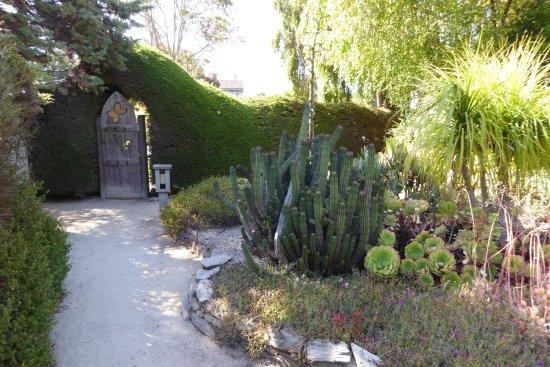 Foto Cambria Pines Lodge