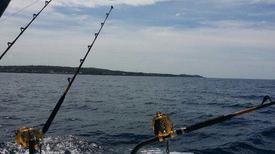 Stanley's Deep Sea Fishing: 20160916_101920_large.jpg