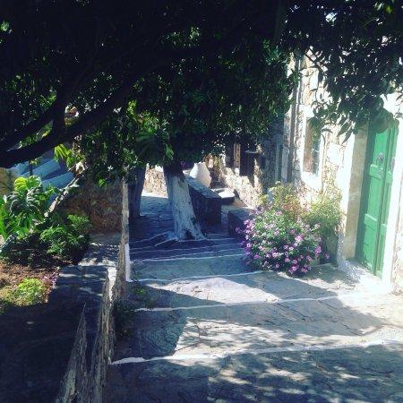 Arolithos Traditional Cretan Village: Hôtel typique, chambre très simple mais en harmonie avec le cadre. Très jolie piscine. Demi pens