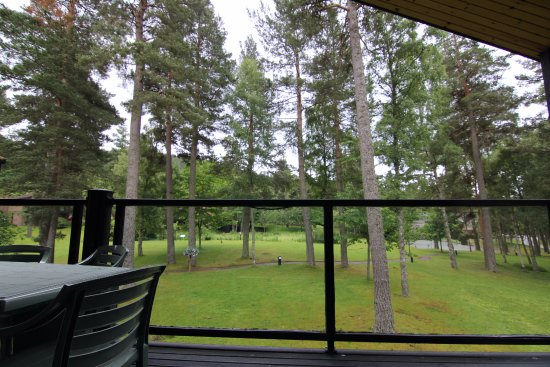 Ballater, UK: View from the veranda. Quite nice especially early in the morning at dusk.
