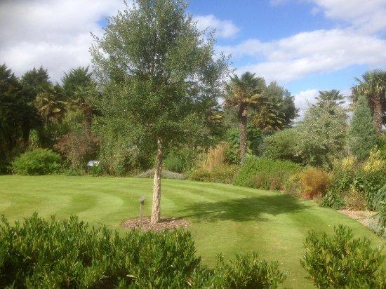 Cannington, UK: The open lawn area