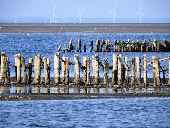 Jutland, Danemark : photo0.jpg