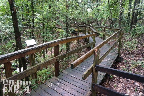 Chipley, FL: The boardwalk is mostly accessible to all ages although the elderly and wheelchairs will have is