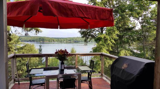 Dwight, แคนาดา: Check out this amazing cottage we rented in Haliburton, Ontario