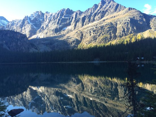 Lake O' Hara: photo3.jpg