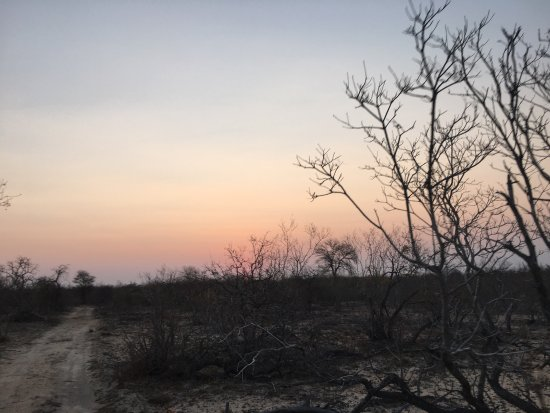 Частный заповедник Балуле, Южная Африка: photo1.jpg