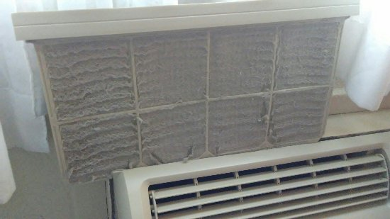 Miami Springs, FL: Air filter nasty