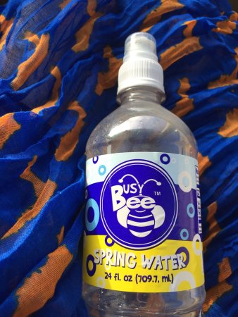 Live Oak, Floride : My new scarf and Busy Bee water! Go Gators!