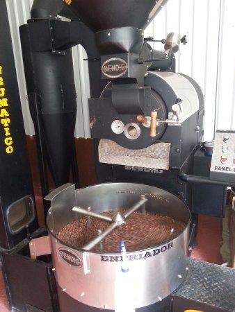 Sarapiqui, Costa Rica : Tueste de cafe