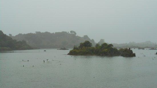 El molino de las aves: vista desde la Casa de Aguas