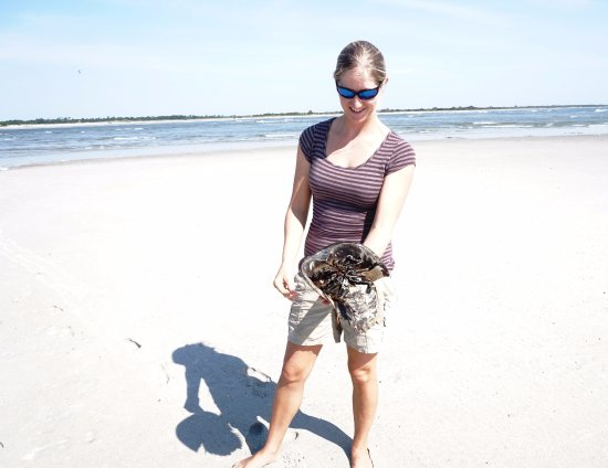 Folly Beach, SC: Weatherly, our guide, teaching us about horseshoe crabs