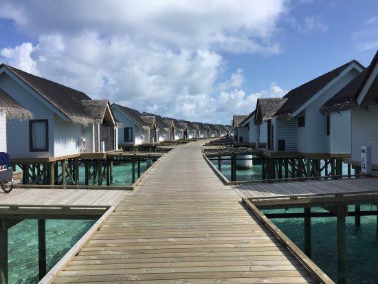 Atoll de Malé Sud : photo2.jpg