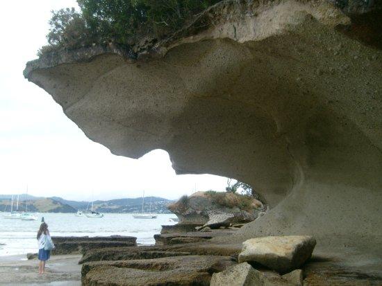 Coromandel Peninsula 사진