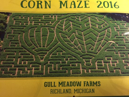 Gull Meadow Farms  Corn Maze Map. Corn Maze Map   Picture of Gull Meadow Farms  Richland   TripAdvisor