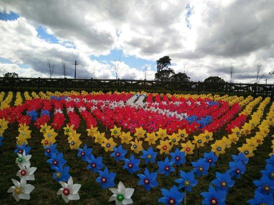 Berrima, Australia: IMG20160917113754_large.jpg