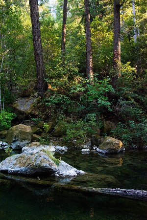 Cazadero, Californien: A little piece of Heaven