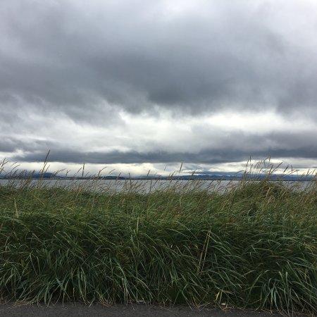 Seltjarnarnes, IJsland: photo1.jpg