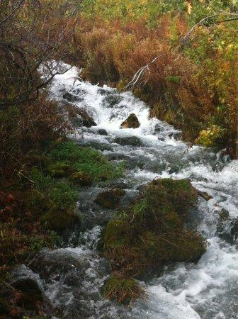 Cascade Springs: photo1.jpg