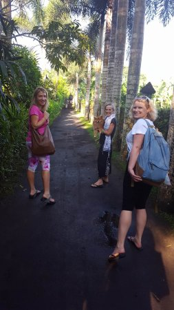 Sharing Bali: Arriving to greet our dear friend and host Karen and her dog Cantik