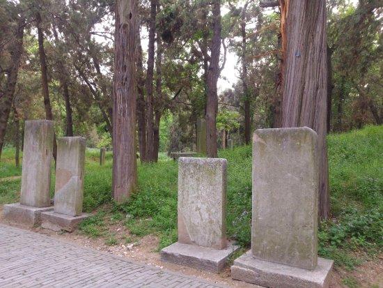 Qufu, Cina: 孔林孔家墓園