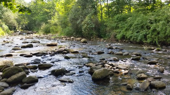 Banner Elk, Carolina do Norte: creek next to the tasting room to kick back and relax