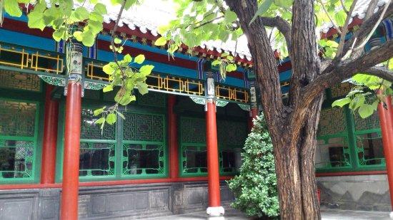 Shenyang, Çin: 大帥府庭院種梧桐 據說是張作霖的意思