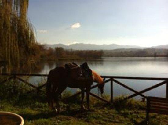 Posta Fibreno, Itália: Lago 2