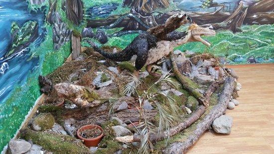 Dinosaur Geopark