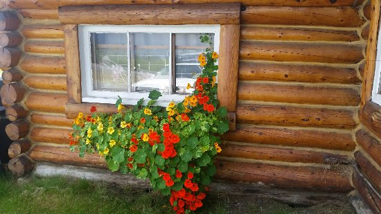 Glennallen, AK: Mendeltna Creek Lodge