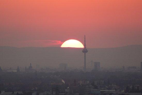Schriesheim, Germany: Fernsicht bis zum Pfälzer Wald mit Fernsehturm in Mannheim