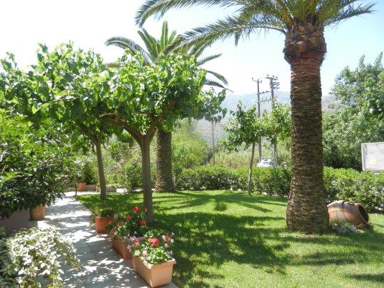 Athena Hotel: Garden