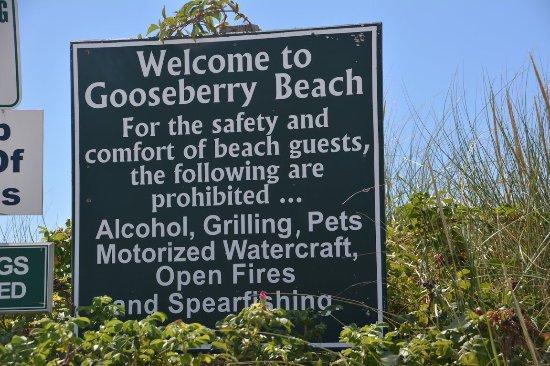 Gooseberry Beach: photo0.jpg