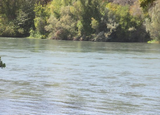 Sacramento River, Sacramento River Bend Area, Red Bluff, CA