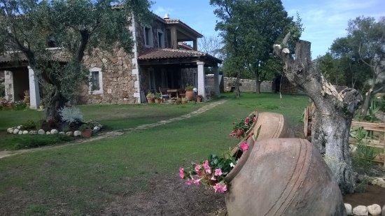 B b il giardino di daniela san teodoro italie voir for B b san teodoro