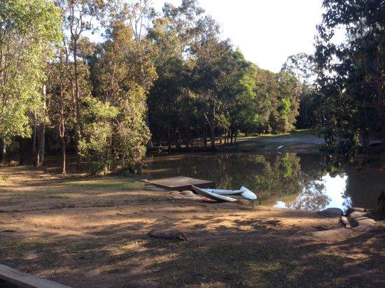 Traveston, أستراليا: Lagoon