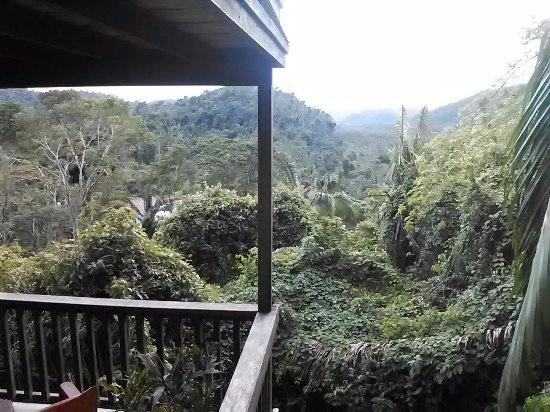 Ian Anderson's Caves Branch Jungle Lodge: Different view from balcony of tree house 25
