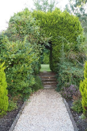 Woodlands, UK: Conifer archway in garden