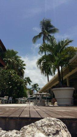 Holetown, Barbados: 20160823_121012_large.jpg