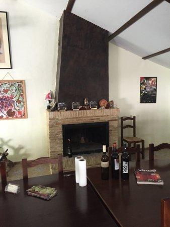 Bullas, Испания: Del av vinodlingarna och bodegan där vi senare provade några viner, mkt. bra!