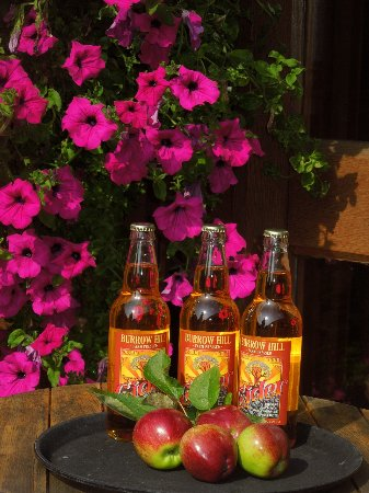 South Petherton, UK: Wonderful Burrows Hill Cider