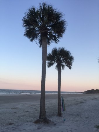 Hunting Island State Park Campground 이미지