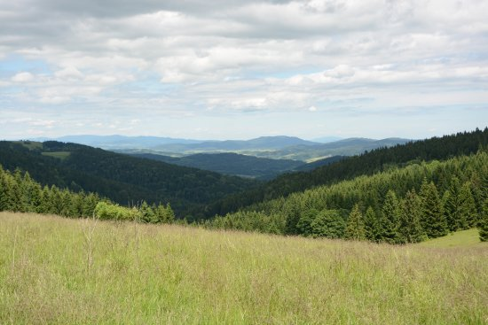 Snieznicki Landscape Park