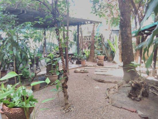 The Chiang Mai White House : Peaceful garden