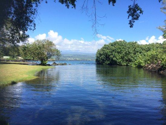 Keaukaha Beach Park: Beautiful water at 10am