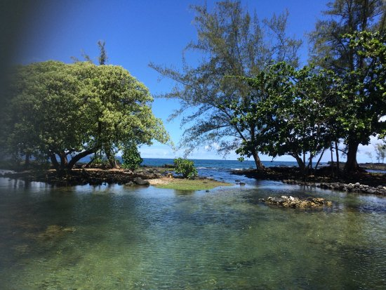 Keaukaha Beach Park: Chilling out in a tropical paradise