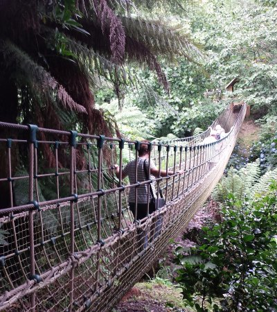 St Austell, UK: The rope bridge you can walk across