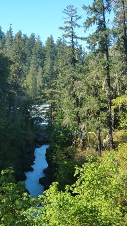 Port Alberni, Canada: upstream river the begining of the salmon ladder